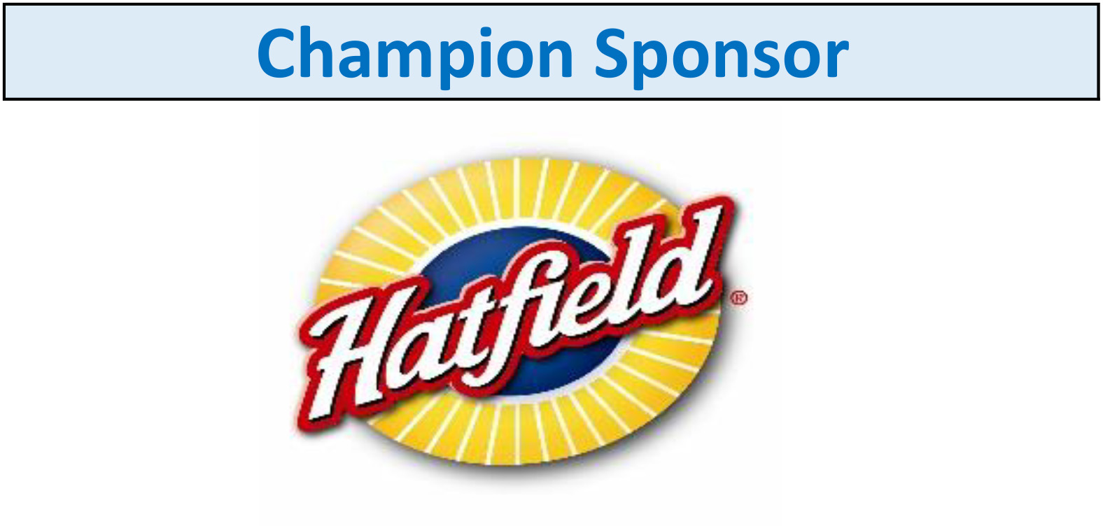 Website-sponsorship-Champion1