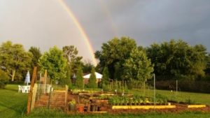Garden with rainbow